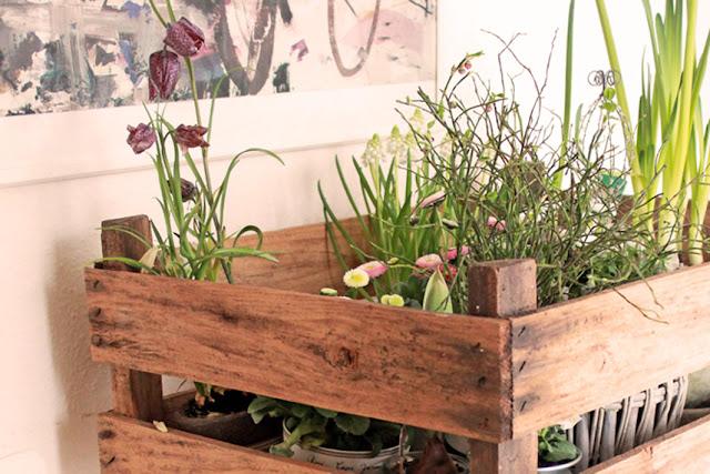 Amalie loves Denmark Frühlingsblumen in einer Holzkiste