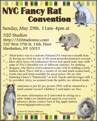 NYC FANCY RAT CONVENTION!