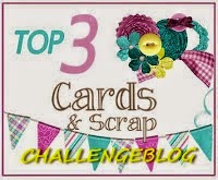 cards and Srap challengeblog