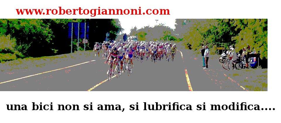 www.robertogiannoni.com