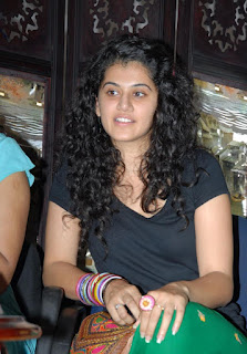 Tapsee Stills at dello Godari Movie Pressmeet (32).jpg