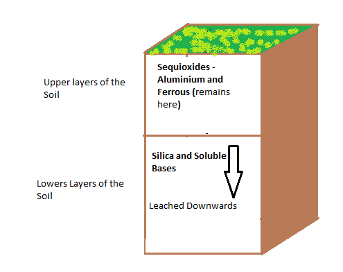 Top 10 processes of soil formation genetic disorders for Soil development definition