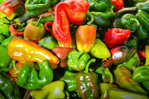Apprendista mamma cucinare a settembre con i peperoni - Cucinare i peperoni ...