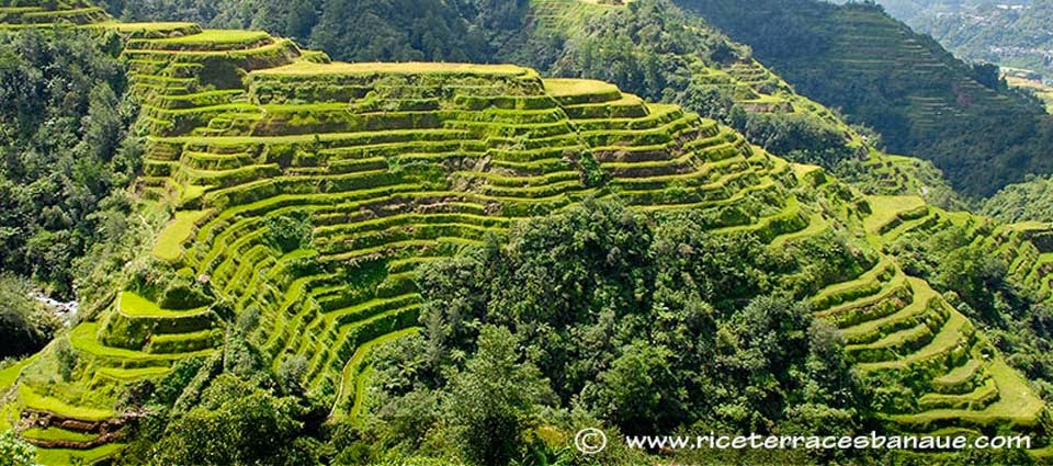 travel north philippines banaue rice terraces   8th wonder