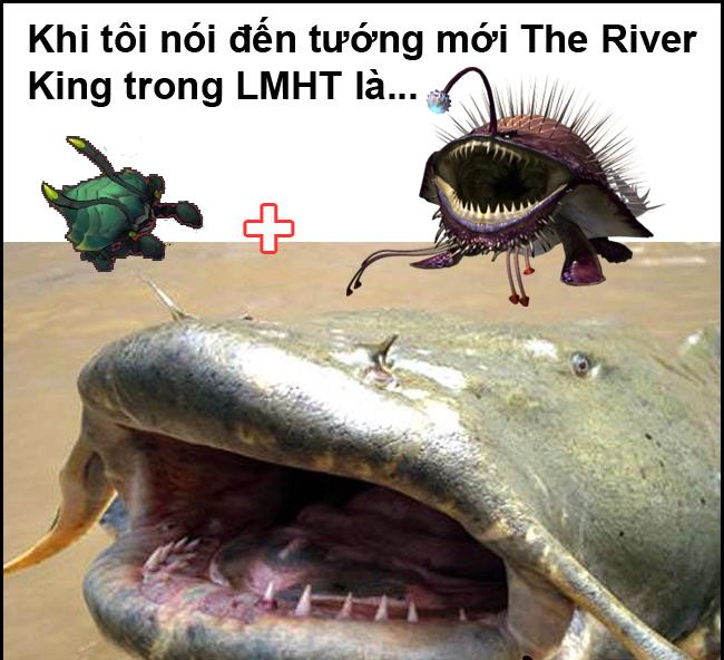 River King sự lai tạo giữa cua kỳ cục và loài cá da trơn