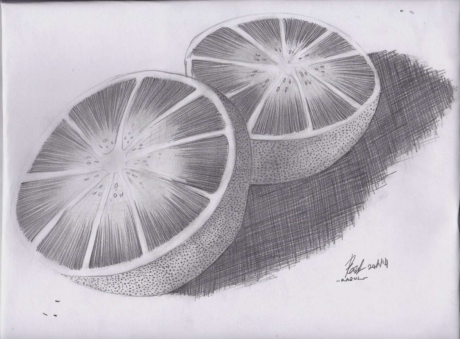 Sol LeWitt A Wall Drawing Retrospective  MASS MoCA