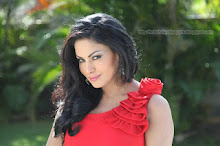 Veena Malik  Wallpapers