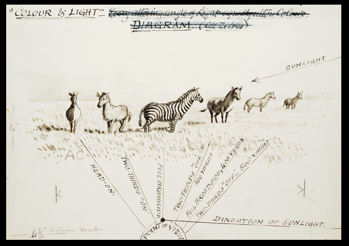 Original drawing by Abel Chapman from his book 'Savage Sudan' (London 1921)