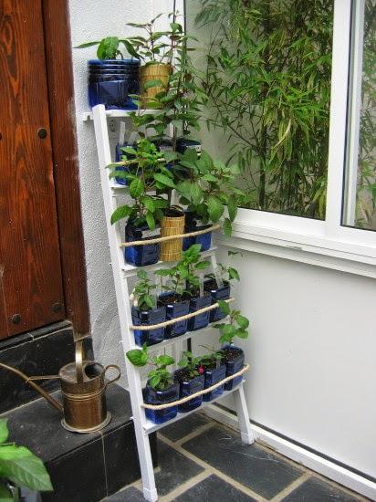 Del jard n al reciclaje escalera para macetas for Escaleras para caminar fuera del jardin
