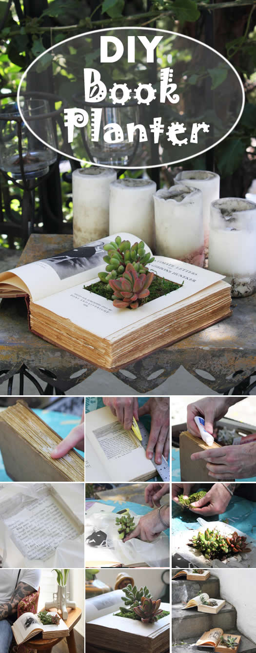 DIY : Book Planters For Succulents