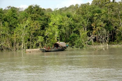 Sundarbans Bangladesh India