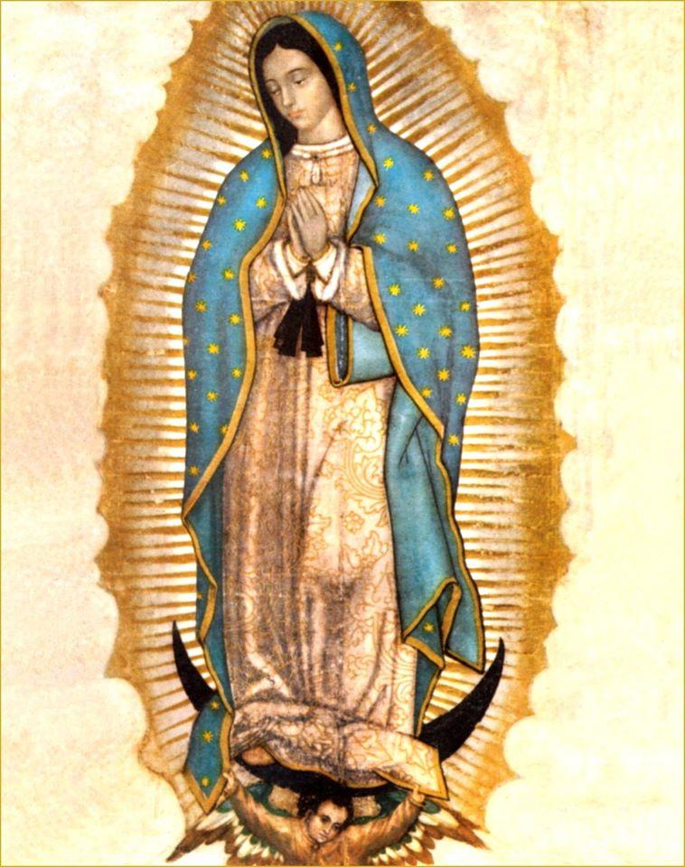 Libro: Las Glorias de María (dar clip en las imágenes)