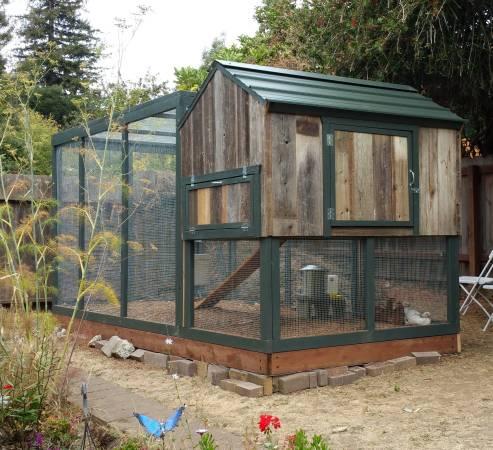 Lloyd s blog chicken coop chicken run 1425 sf bay area for Chicken run for 6 chickens