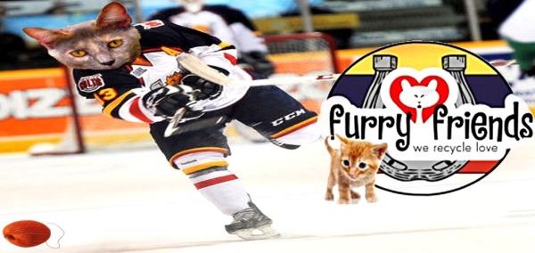 Help Furry Friends