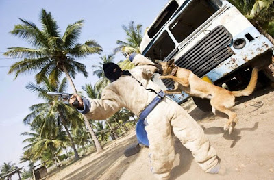 Canine Commandos Being Trained Seen On www.coolpicturegallery.us