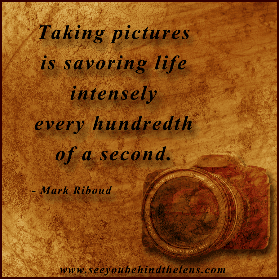 Displaying 16 gt Images For Quotes About Capturing Moments