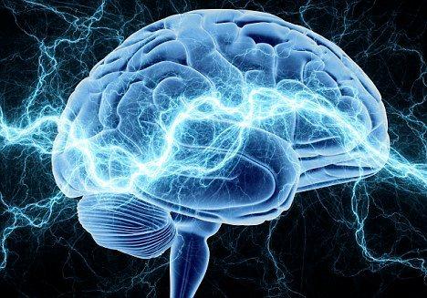 要做到當我們要用意識的時候,它就自然顯現,等到不用意識的時候,它就收藏起來。所謂的「意識」就是「腦神經的活動」,一個人每天從早到晚活動再到睡眠,但是在晚上睡眠的時候,我們的腦神經還是在活動的狀態之下,表示我們腦神經使用的時間太長了,這樣腦神經的能量會消耗得太多。那麼「如何讓讓腦神經的能量能夠減少消耗?」在我們不用意識思考的時候,就不要浪費我們的腦神經。這就要靠我們平日如何來訓練自己,讓我們的意念在不用的時候,就空掉,但是在要用的時候,馬上就可以想起來,就可以使用它。所以,禪定的功用,就是既可以讓腦筋有真正休息的時間,也可以立刻隨時使用。一般人白天工作,晚上睡覺,睡覺時,就是讓我們的身心可以休息,讓我們的身心能夠作保養,保持它原來各組織系統的功能。如果你沒有好好的保養它,沒有休息的時候,一直在浪費身心的能量,那麼就間接、甚至直接地影響到自己的健康、自己的壽命。人的壽命長短決定於幾個重要因素:其中一個因素就是「內分泌」,身體的內分泌系統是非常重要的,內分泌不足的人,就會產生很多的病變。我們的骨髓、腦髓,還有其他器官所需要的內分泌,這些內分泌就是用來提供特殊的荷爾蒙,供給細胞組織能量。例如說你在年輕的時候,一直不停地使用腦力,等到年老的時候,腦汁不夠用了,那麼你很容易就變成「老年癡呆症」。很多有名的人或是一些在年輕時候很有一番作為的人,他們到了老年的時候,卻罹患了「老年癡呆症」,這就是他們在平時缺少了對腦部的保養功夫。禪坐以後,你可以隨時補充生命力。隨時補充生命力有什麼好處?你可以保持永遠年輕!當身體裡面的內分泌逐漸減少,人就會慢慢的顯現衰老而體力衰退,如果你的營養分及內分泌充足,足夠我們身體各部門的機能供應,就可以依然保持我們原來年輕時候的體能狀態。所以學習禪定不管從哪一方面來說,從身體方面也好、從精神方面也好,連心裡方面都會覺得非常的健康。當你擁有了健康以後,表示你的身心,已經取得了一種統一的平衡,身心平衡就是「禪」。