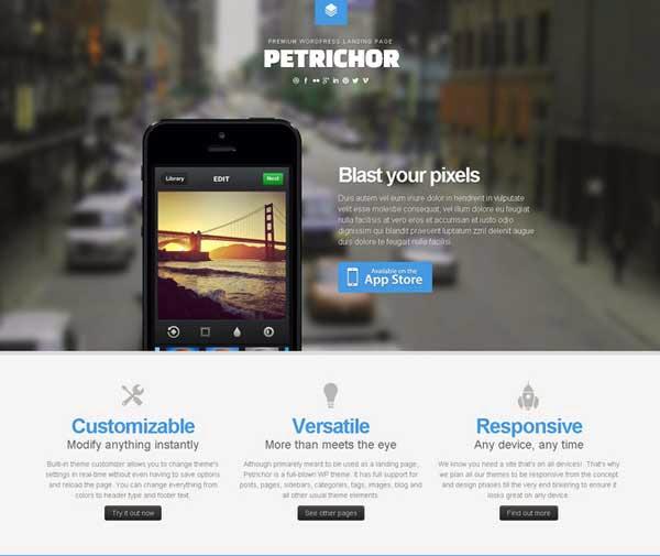Petrichor – Responsive WordPress Landing Page