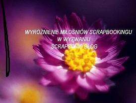 wyróżnienie miłoścników scrapbookingu