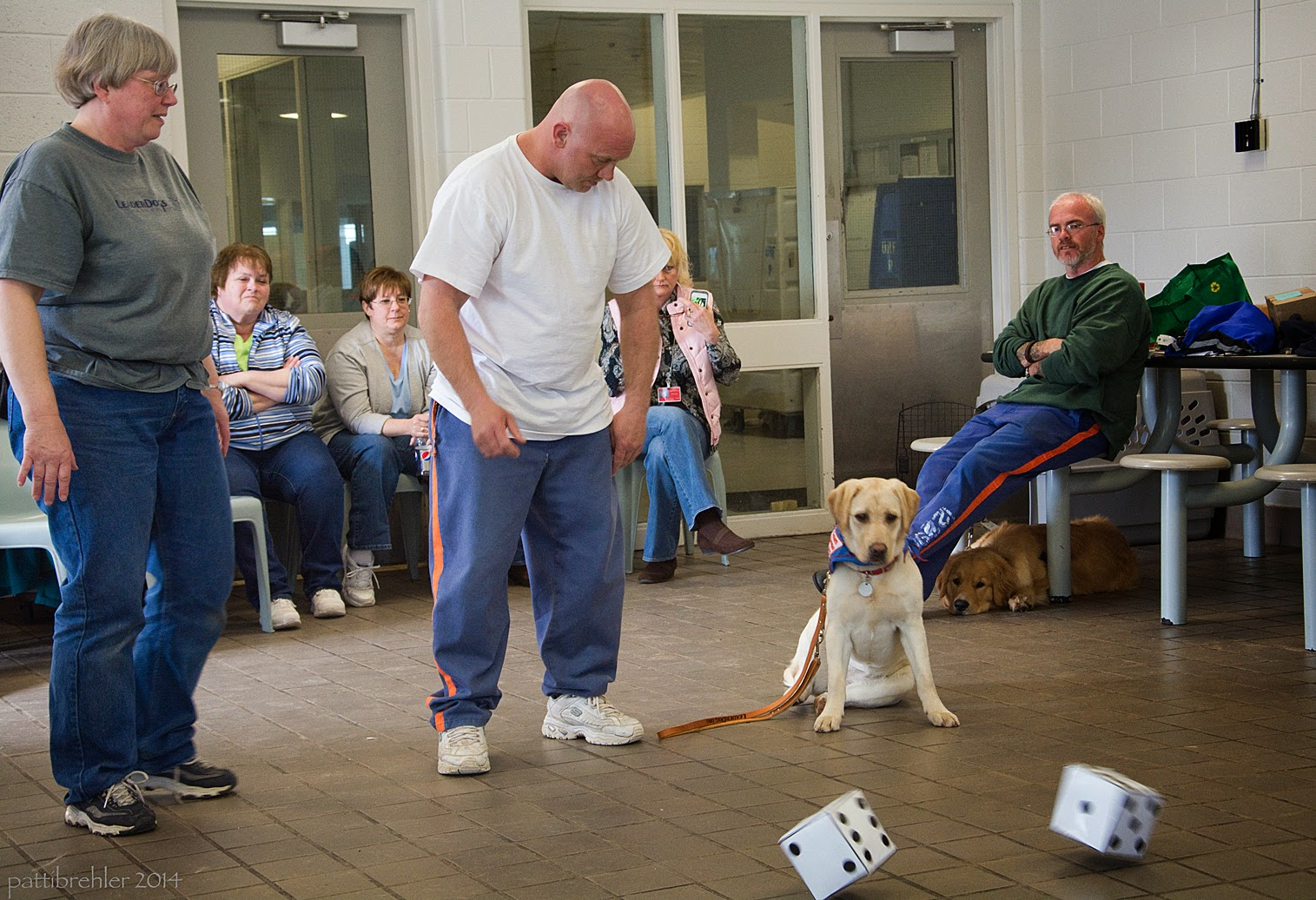 The woman dressed in jeans and a grey t-shirt is standing on the left side of the photo, looking to the right. A man wearing blue prison pants and a white t-shirt and is bald, is standing in the middle of the photo with his arms at his side. He is looking down to the right at a yellow lab that is sitting on a tile floor. The puppy's leash is laying on the floor next to her, attached to her collar. She is wearing a blue bandana. There are two large six inch dice about to come to rest on the floor in the foreground. The man with blue priosn pants and a green sweat shirt is sitting on the right side with his arms crossed on his chets. Ther eare three women sitting on chairs behind the others.