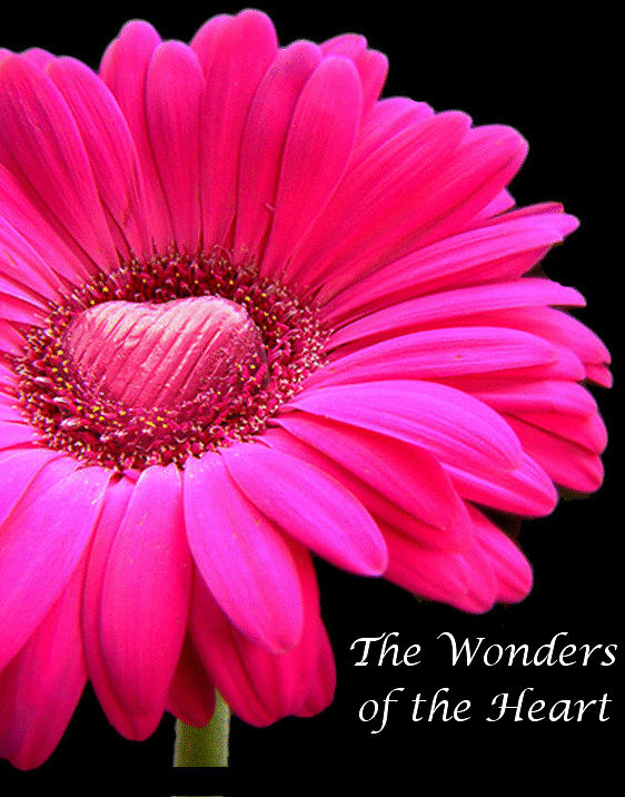 Flower, The Wonders of the Heart