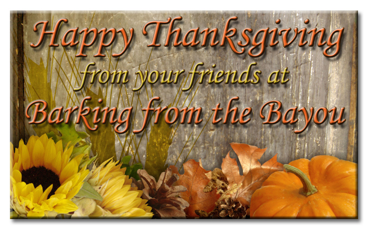 Happy Thanksgiving from Barking from the Bayou in autumn graphic