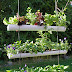 Gutter Garden Ideas