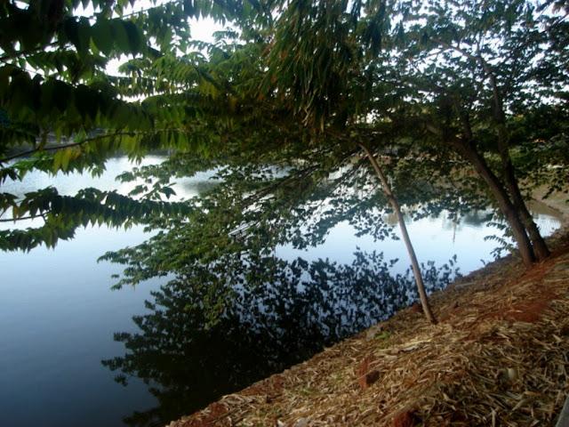 Parque Areião-Goiânia-Preservação ambiental