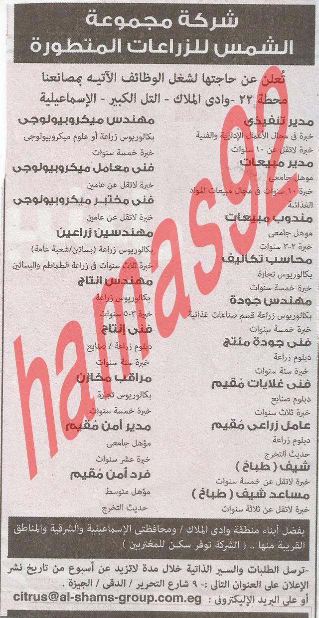 وظائف خالية جريدة الاهرام الجمعة 28-06-2013