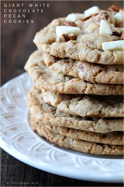 Giant, chewy cookies loaded with big chunks of chocolate and pecans! LoveGrowsWild.com #cookies #chocolate #pecans