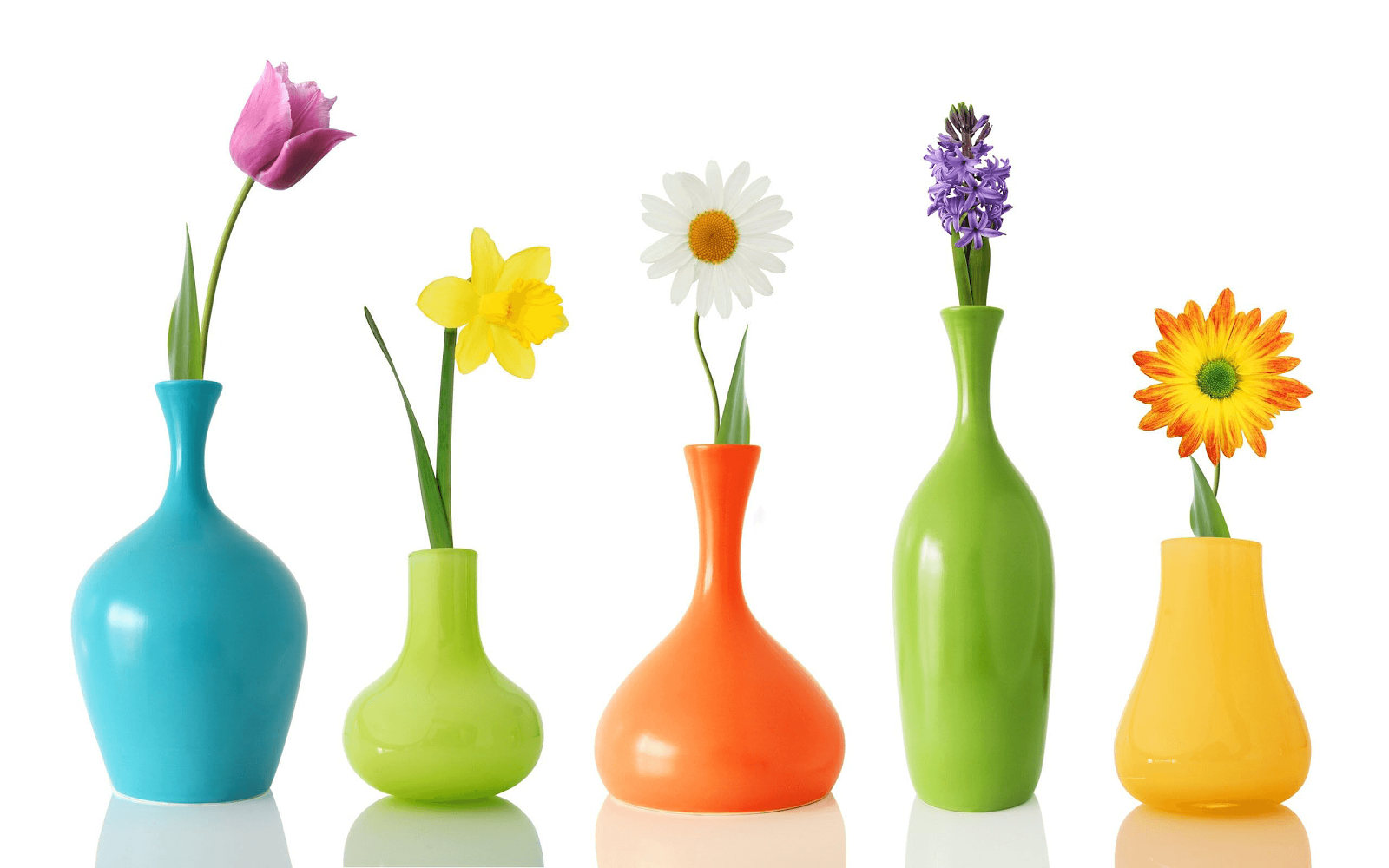 Foto van bloemen in gekleurde vazen