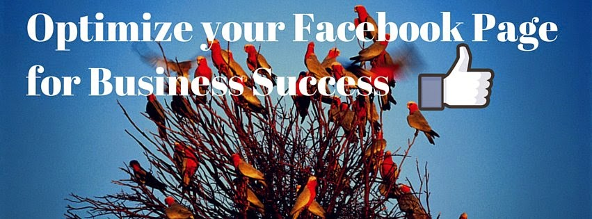 Optimize Facebook Pages