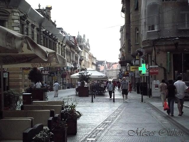 nagyvárad nevezetességei látnivalók sétáló utca fotó