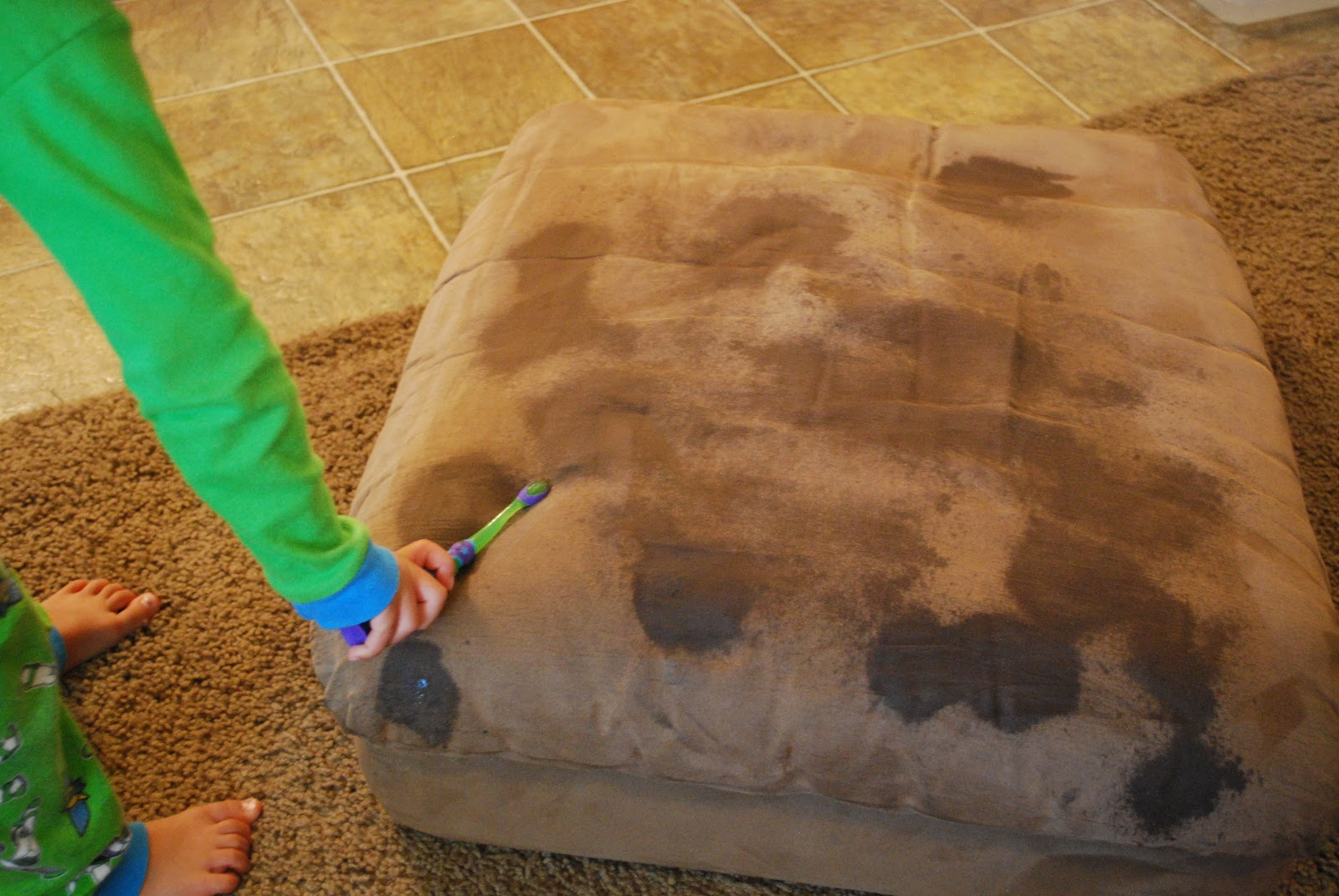 how to clean cat poop from couch