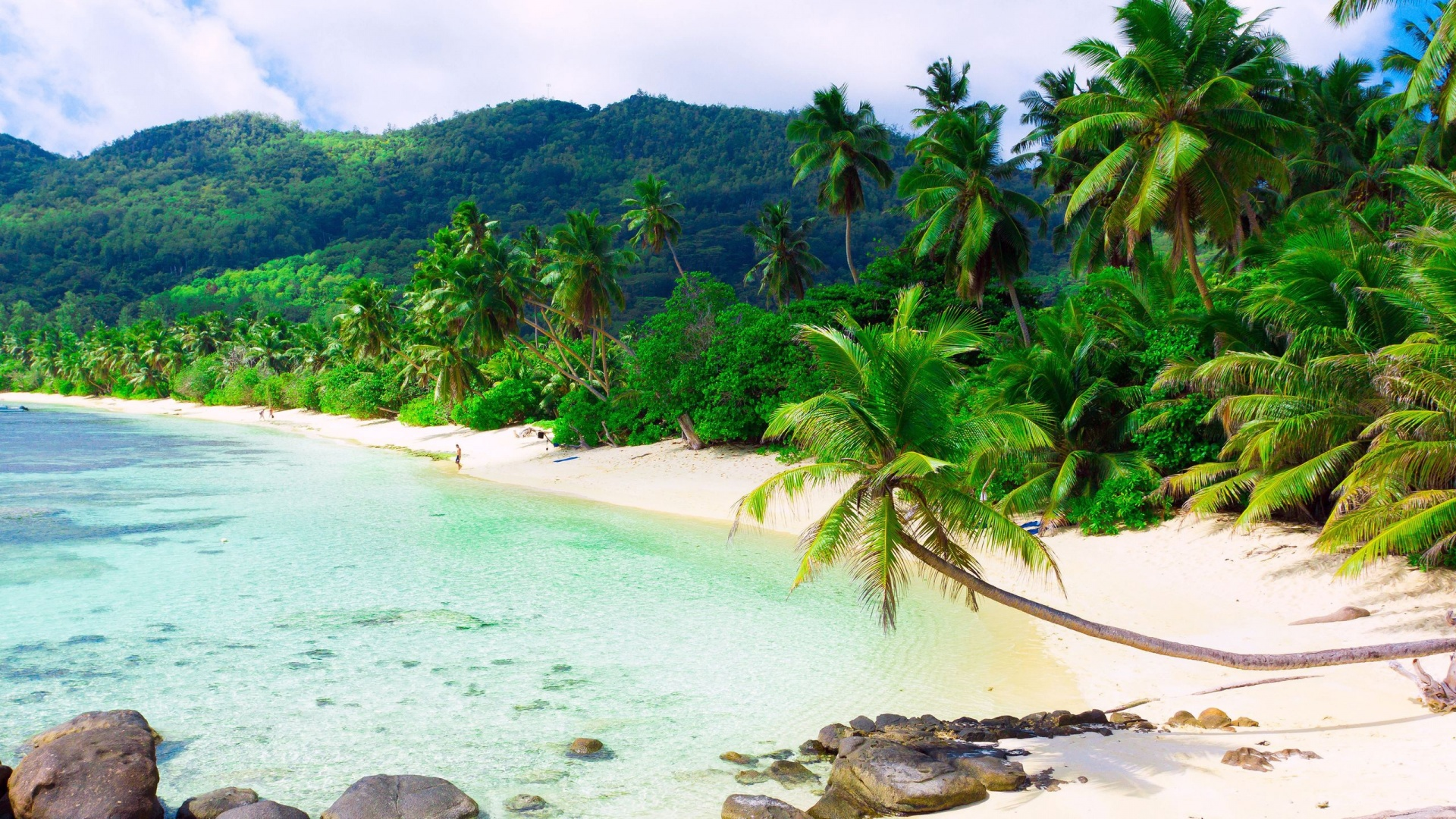 beautiful exotic beach high definition wallpapers hd