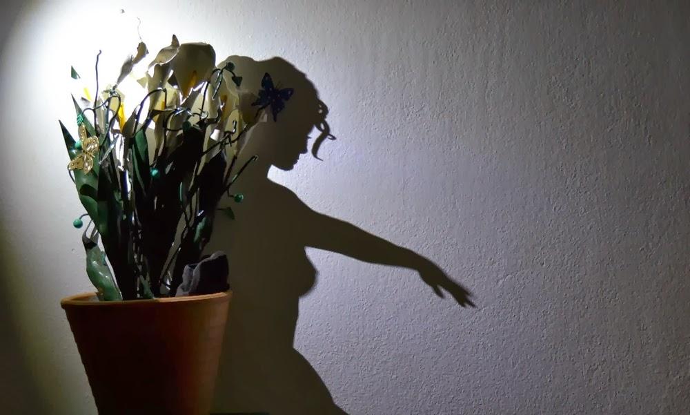03-Juliet-emerges-from-the-flowerpot-Teodosio-Sectio-Aurea-Shadow-Art-www-designstack-co