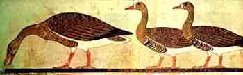 Os gansos de Medum remontam a mais de 2 mil anos antes de Cristo.   Detalhe num friso pictórico na antiga cidade de Medum.