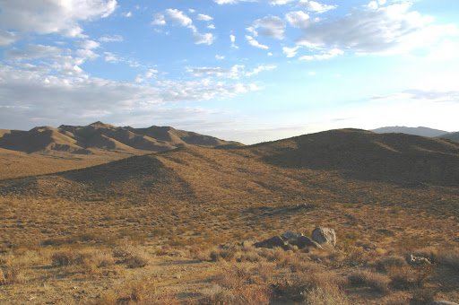Mojave Desert Diary...
