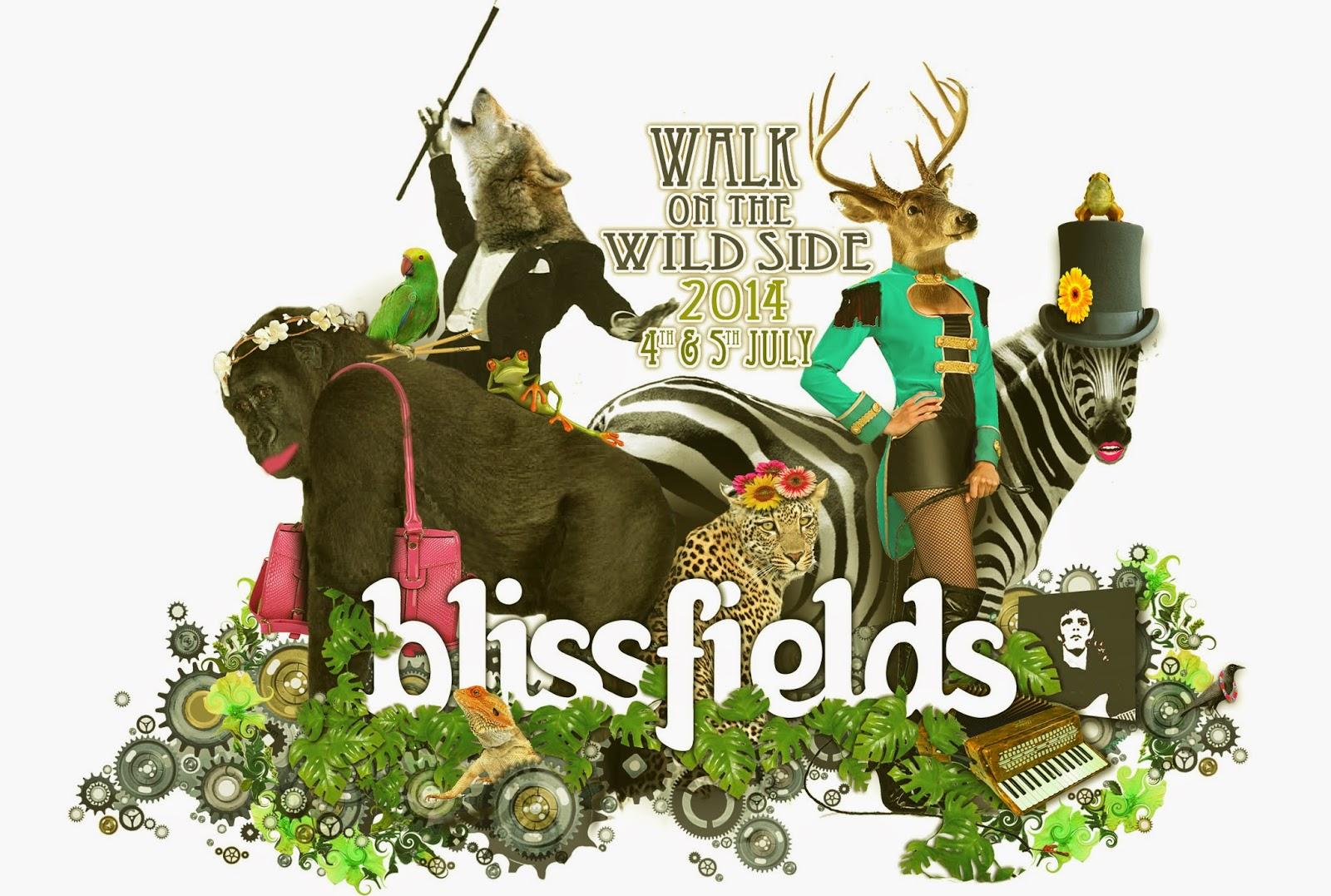 Blissfields festival 2014