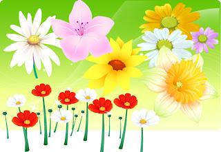 Renkli Çiçek ve Papatya Vektörleri
