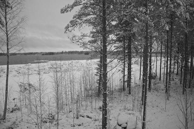Seinäjoki Kyrkösjärvi, Seinäjoen Asuntomessut