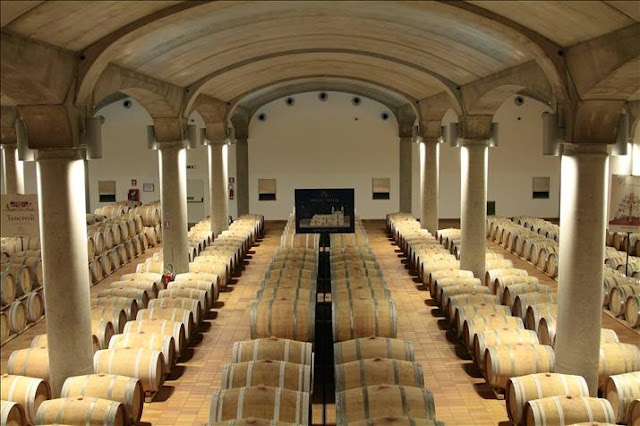 visiting Donnafugata winery