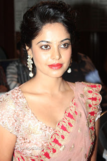 Actress Bindu Madhavi Saree Picture Stills 015.jpg
