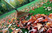 raking yard lawn hack leaves fall autumn