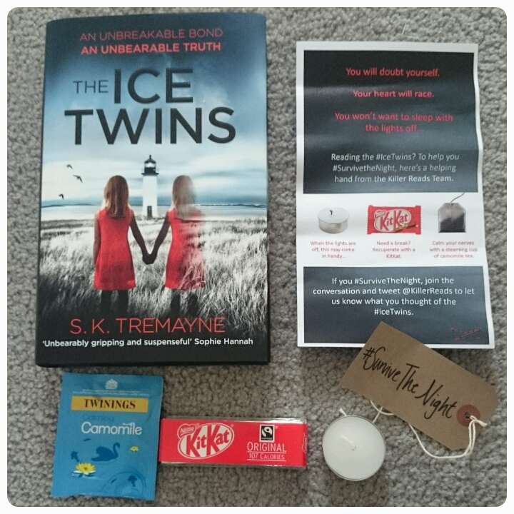 the ice twins book