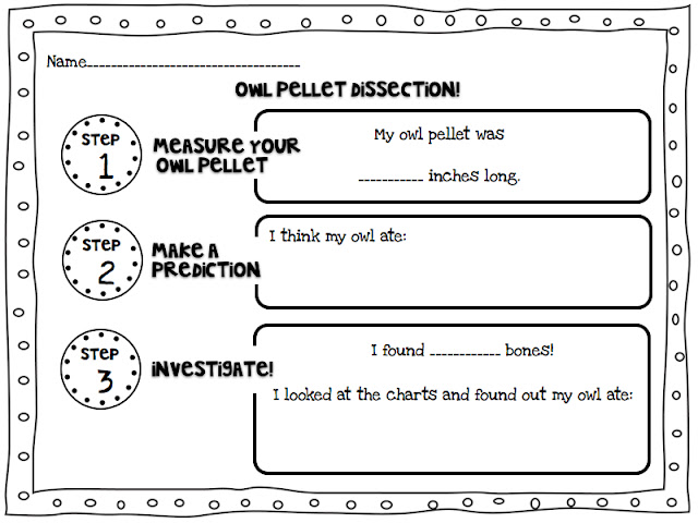 A Day in First Grade – Owl Pellet Dissection Worksheet