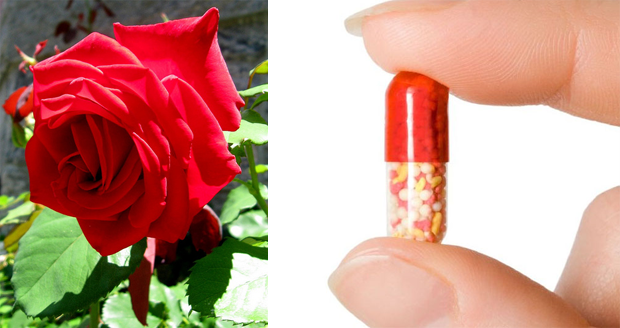 Rose Scented Farts Pill
