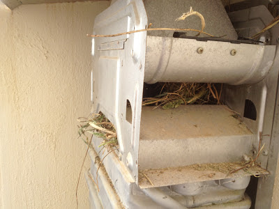 gas heater nest