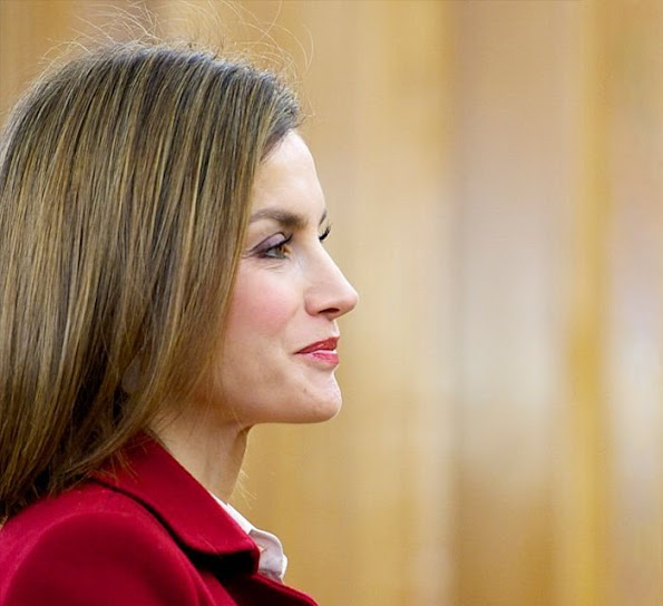 Queen Letizia of Spain attends an audience at Zarzuela Palace