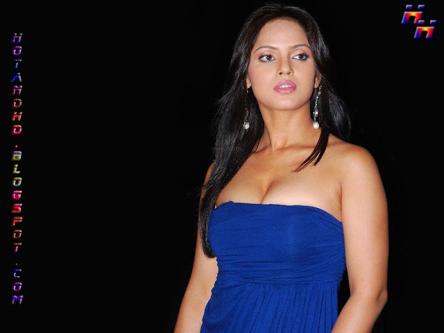 Neetu chandra hot wallpapers download 2013